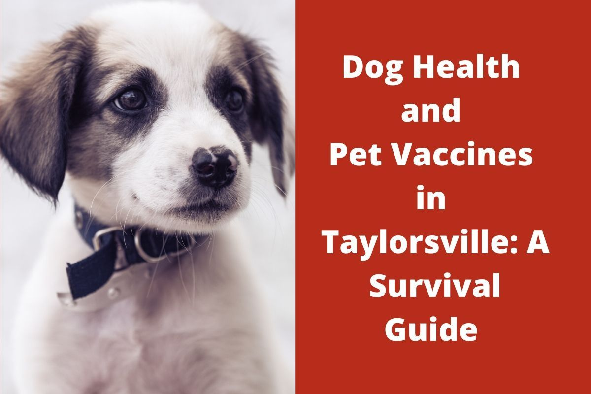 Dog Health and Pet Vaccines in Taylorsville: A Survival Guide