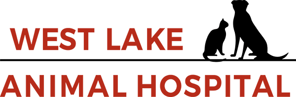 West Lake Animal Hospital Utah